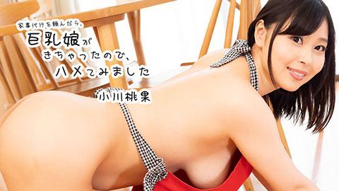 小川桃果 【おがわももか】 家事代行を頼んだら、巨乳娘がきちゃったので、ハメてみました
